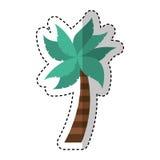 Tree palm isolated icon Stock Image