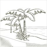 Tree palms on desert hand drawn. Vector illustration graphic design Royalty Free Stock Image