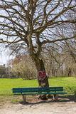 Tree in the park with valentine heart, bench Royalty Free Stock Photography
