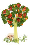 Tree of parsley and celery Stock Photography