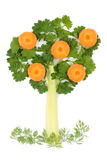 Tree of parsley and celery Stock Photo