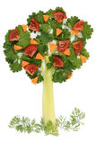 Tree of parsley and celery. Stalks with a lawn grass and fruit Stock Photos