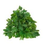 Tree of parsley Royalty Free Stock Photo