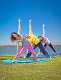 Tree people practice Yoga asana on lakeside. Yoga concept. Royalty Free Stock Image
