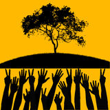 Tree with peoples hands. A silhouette of a tree and peoples hands on a yellow background Royalty Free Stock Photos