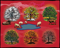 Tree phases. Different phases of a tree all year round. Additional format Illustrator 8 eps file vector illustration