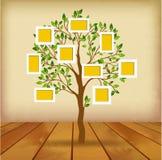 Tree and photos Royalty Free Stock Photos