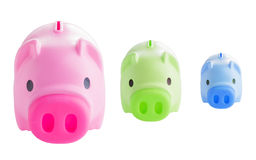 Tree piggy bank Stock Photos