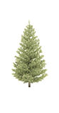 Tree pine fir 3d cg. Tree pine fir Christmas tree new year 3d cd Royalty Free Stock Photography
