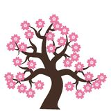 Tree with pink flowers Stock Images