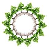 Tree planet Royalty Free Stock Image