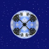 A Tree planet in sky full of stars Royalty Free Stock Photos