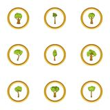 Tree plant icons set, cartoon style. Tree plant icons set. Cartoon style set of 9 tree plant vector icons for web design Stock Photo