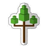 Tree plant isometric icon Royalty Free Stock Photo