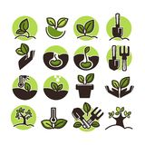 Tree planting and green gardening horticulture vector icons set Royalty Free Stock Image