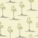 Tree planting seamless pattern Stock Photos