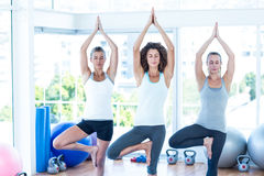 Tree pose with eyes closed Royalty Free Stock Images