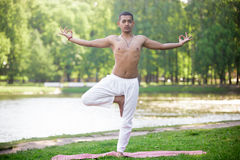 Tree pose in park. Serene attractive Indian young man in white linen clothes working out on river bank in park, standing in Vrikshasana (Vriksasana, Tree Pose) Royalty Free Stock Image