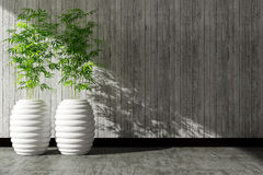 Tree pot and concrete wall interior decorated Royalty Free Stock Images