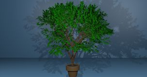 Tree in a pot royalty free illustration