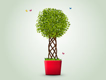 Tree in a pot. Vector illustration. Tree in a red pot. Green leaves, a designer trunk, grass, butterflies Stock Images
