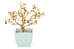 A tree and pot on white background.3D illustration. Royalty Free Stock Photos