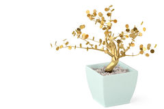 A tree and pot on white background.3D illustration. Stock Photography