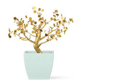 A tree and pot on white background.3D illustration. Stock Image