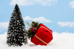 Tree with Present Royalty Free Stock Photography