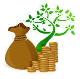 Tree profits growing and gold coins Stock Image