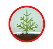 Tree protected. Small Christmas trees or young fir tree growing on soil in red circle on white background, vector eco sign Stock Images