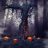 Tree with pumpkins and cobwebs Royalty Free Stock Photos