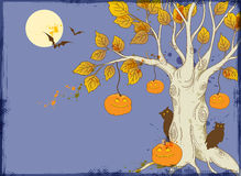Tree and pumpkins Stock Photography