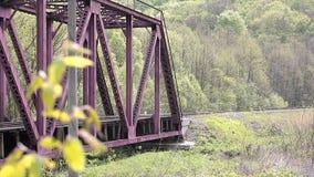 Tree and railway bridge stock video