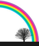 Tree and rainbow Royalty Free Stock Image