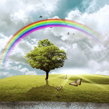 Tree With Rainbow Royalty Free Stock Image