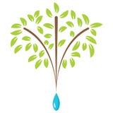 Tree with Raindrop Growth Icon Royalty Free Stock Photo