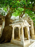 Tree in Ranakpur Jain Temple Stock Images