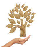 Tree recycled paper craft stick Stock Photography