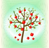 Tree with red apple, summer theme on abstract green background, symbol of  crop. Eps10 vector Royalty Free Stock Photography