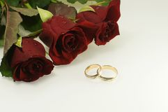 Tree red roses with two wedding rings Royalty Free Stock Photography