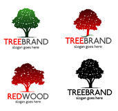 Tree Red Wood Logo Royalty Free Stock Images