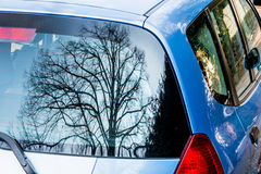 Tree reflected in car window Royalty Free Stock Photography