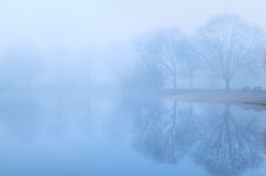 Tree reflected in lake and fog Stock Photo