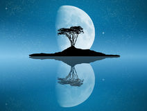 Tree reflected in the moonlight. Illustration of tree reflected in the moonlight Stock Images