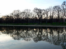 Tree and reflecting pool at Lincoln Memorial in Washington DC. Washington DC Reflecting Pool at sunset royalty free stock photography