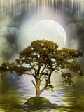 Tree reflection. In the ocean in a peaceful night royalty free illustration