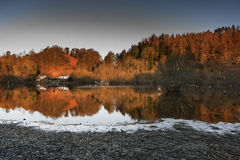 Tree reflections at Loch Lomond in Scotland Royalty Free Stock Images