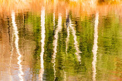 Tree reflections on pond and Fall color Royalty Free Stock Image