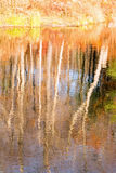 Tree reflections on pond and Fall color Stock Image